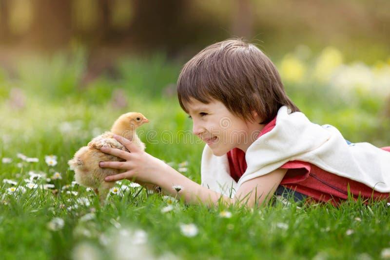 Criança pequena doce, menino pré-escolar, encontrando-se na grama, jogando w fotos de stock