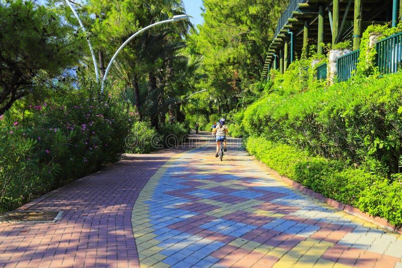 A criança pequena monta uma bicicleta ao longo de um trajeto do ciclo de telhas de pavimentação coloridos entre árvores verdes na foto de stock