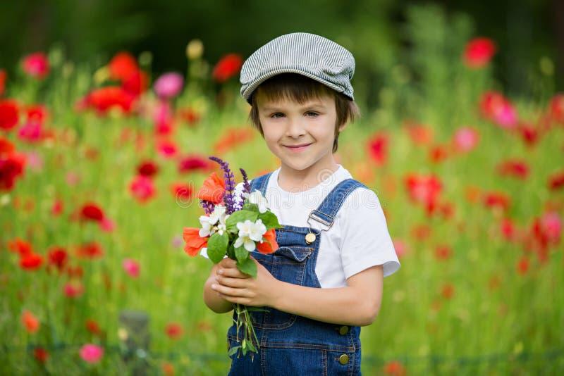 Criança pré-escolar bonito no campo da papoila, guardando um ramalhete de f selvagem imagens de stock