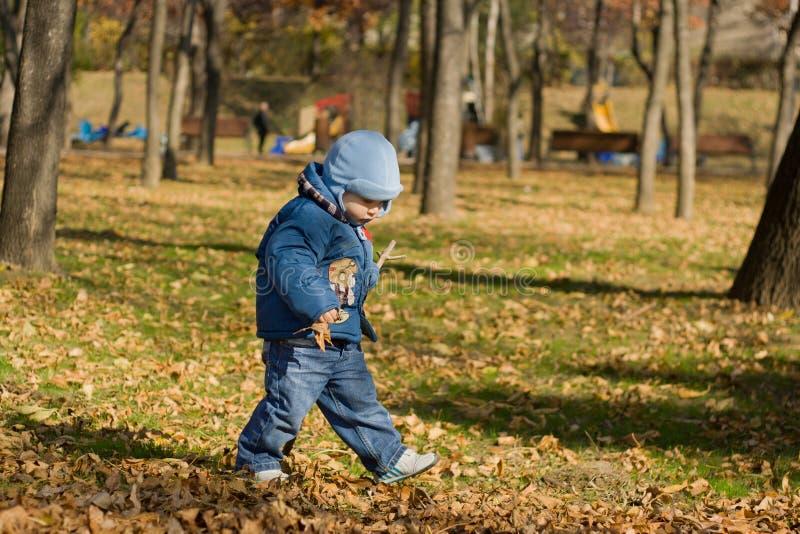 Criança que anda no parque foto de stock royalty free