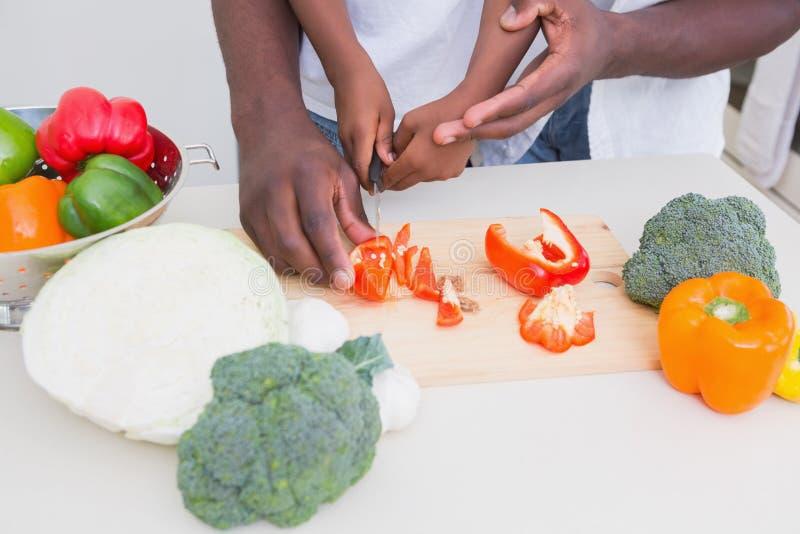 Criança que cozinha com seu pai imagens de stock royalty free