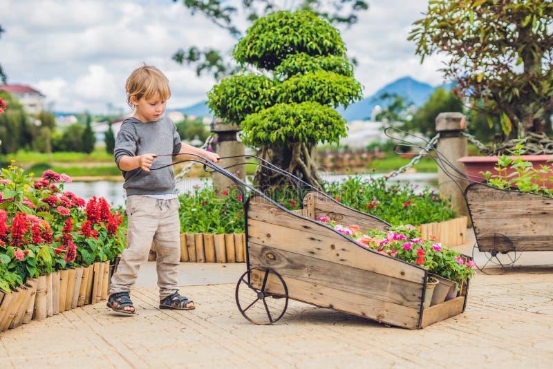 Criança que empurra o trole da roda no jardim menino pequeno doce da criança que joga com o carrinho de mão no quintal criança qu imagens de stock