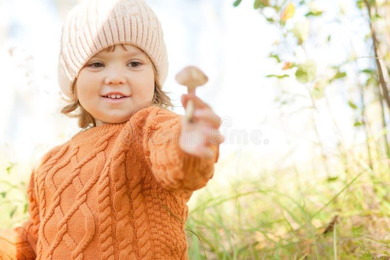 Criança que escolhe o musroom comestível, floresta do outono foto de stock