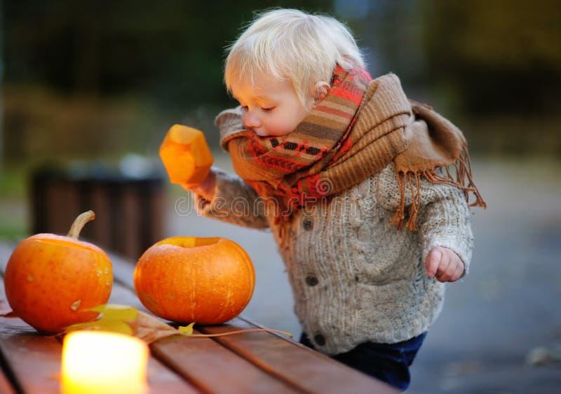 Criança que joga com abóboras do Dia das Bruxas fotos de stock