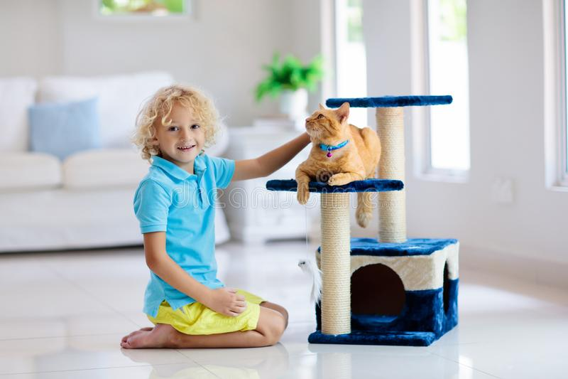 Criança que joga com gato em casa Crianças e animais de estimação imagens de stock royalty free