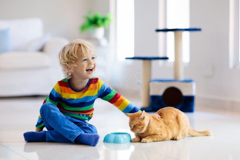 Criança que joga com gato em casa Crianças e animais de estimação foto de stock