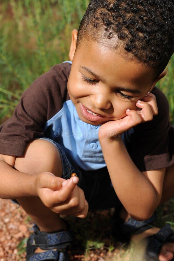 Criança que joga com Ladybug fotos de stock