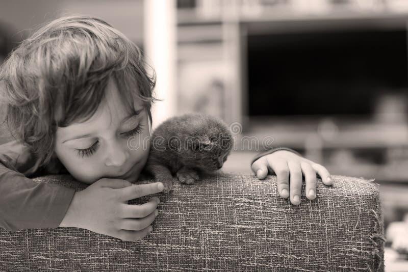 Criança que joga com um gatinho foto de stock royalty free