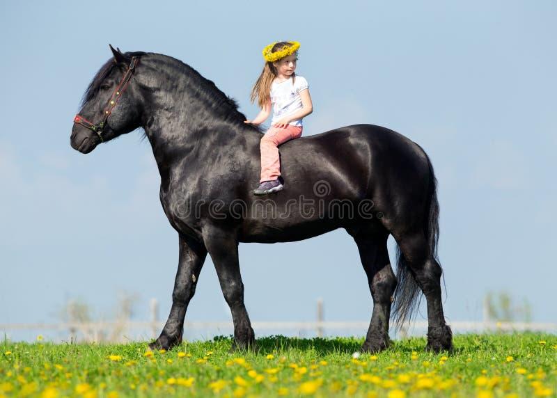 Criança que monta um cavalo grande no campo fotos de stock royalty free