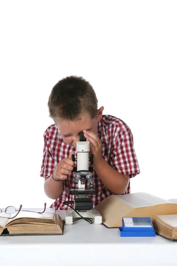 Criança que olha através de seu microscópio imagem de stock