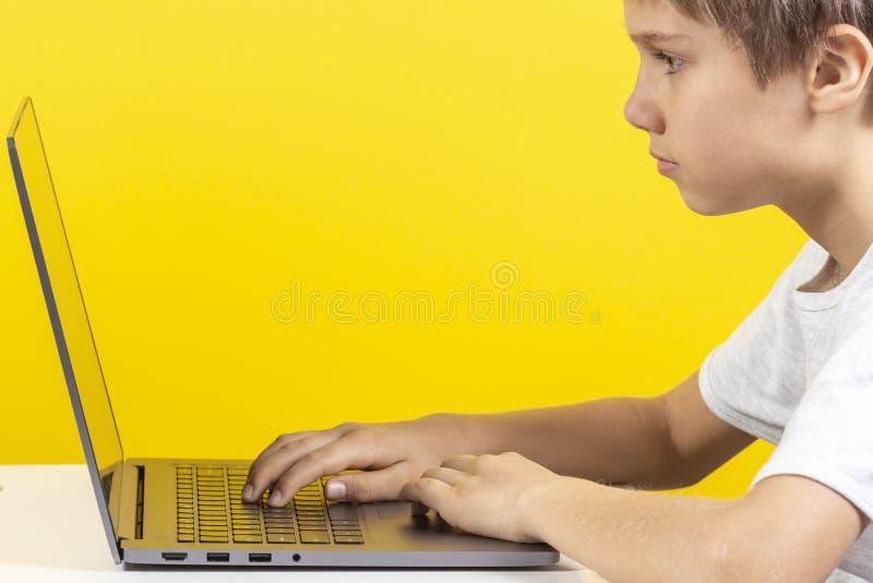 Criança que senta-se na tabela e que usa o laptop, fundo amarelo imagens de stock royalty free
