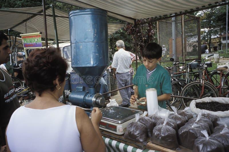 Criança que vende o café no mercado, Brasil foto de stock