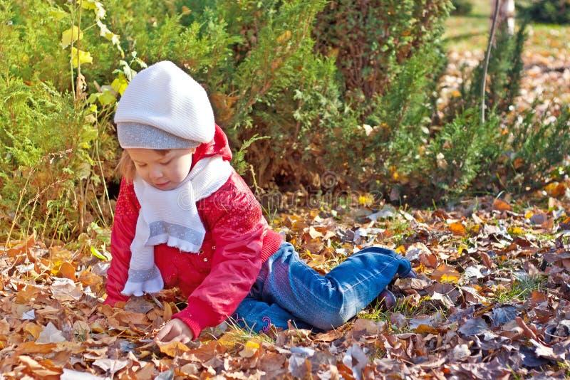 Download A Criança Senta-se Na Terra No Parque Do Outono Imagem de Stock - Imagem de pouco, se: 16871175