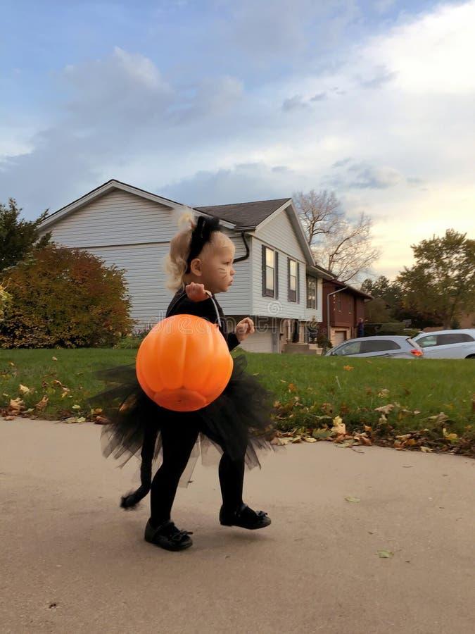 Criança vestida como o gato preto pequeno para Dia das Bruxas imagem de stock