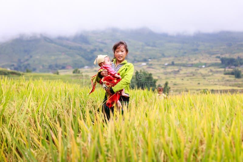 Crianças de Hmong do vietnamita no lado o do rio do terraço do arroz na cidade de Y TY fotografia de stock