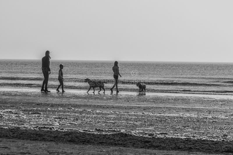 Crianças de uma mulher dois e dois cães imagem de stock royalty free
