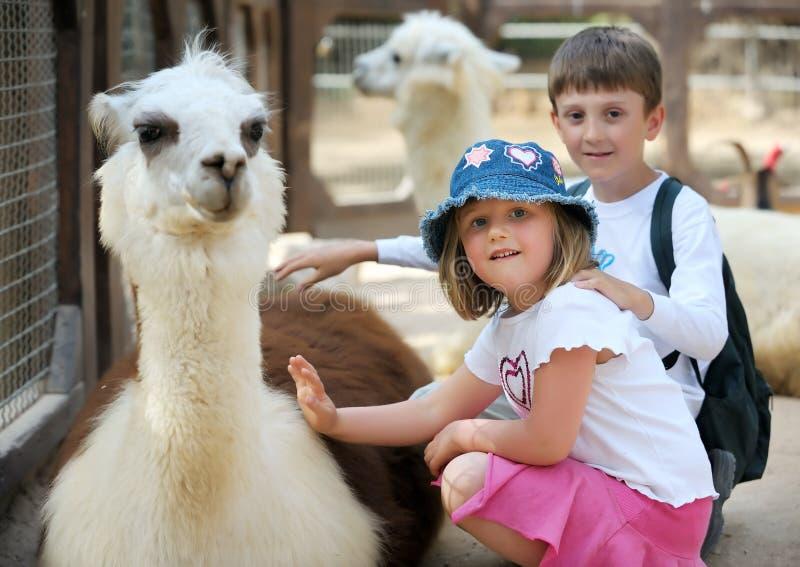 Crianças e animais no jardim zoológico imagens de stock
