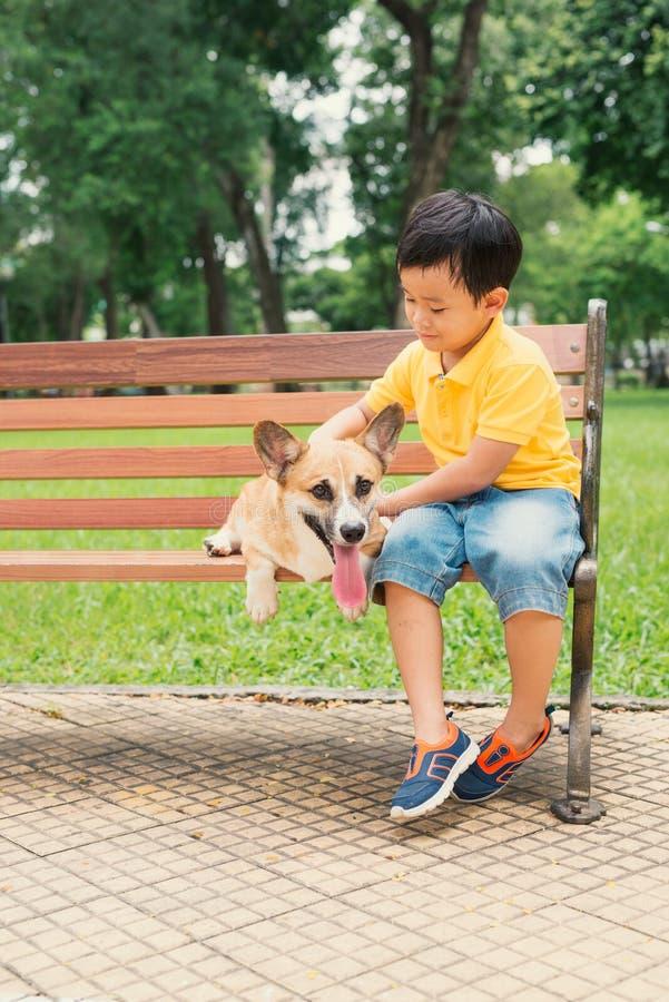 Crianças e cães fora Rapaz pequeno asiático que aprecia e que joga no parque com seu Pembroke Welsh Corgi adorável fotografia de stock