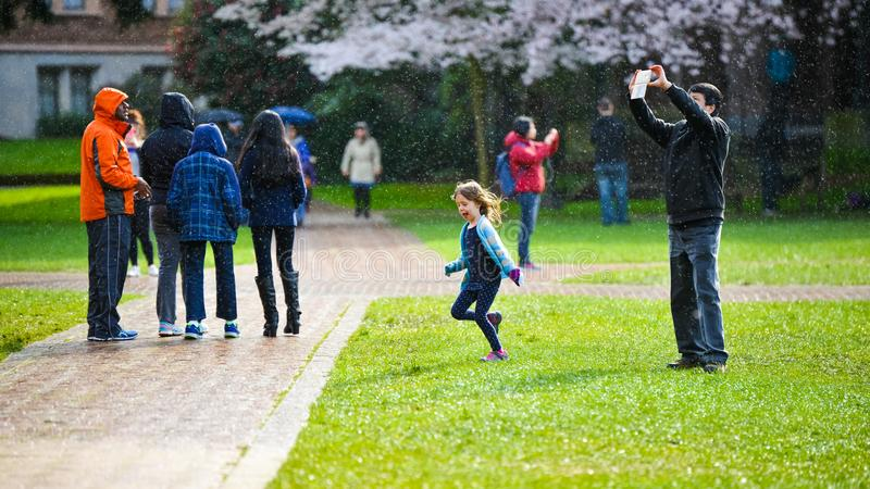 Crianças e família que têm o divertimento na chuva em Cherry Blossom Festival In University de Washington During um o dia de mola foto de stock royalty free