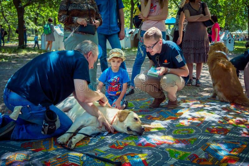 Crianças e seus pais que participam na sessão de terapia do cão imagens de stock