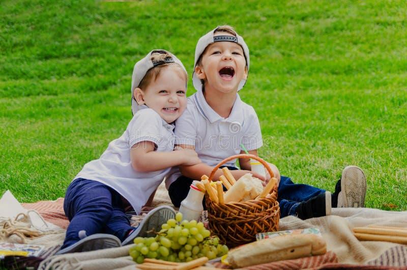 Crianças em um piquenique em um prado verde fotos de stock royalty free