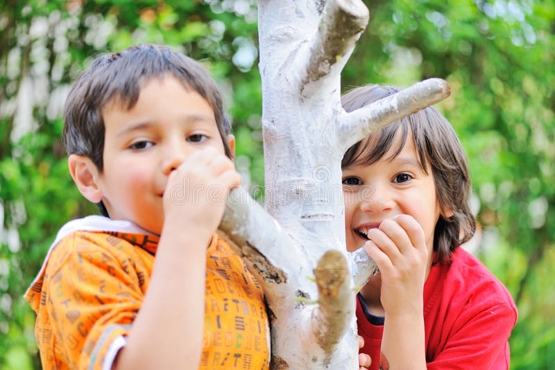Crianças em uma árvore imagem de stock royalty free