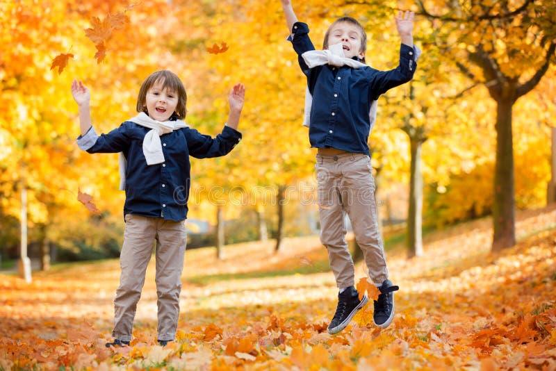 Crianças felizes, irmãos do menino, jogando no parque, leav de jogo imagem de stock royalty free