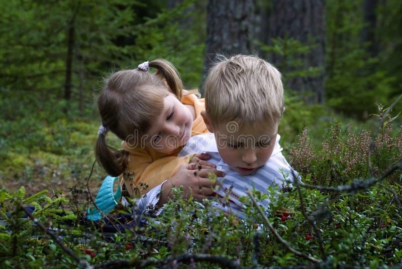 Crianças na floresta imagem de stock royalty free