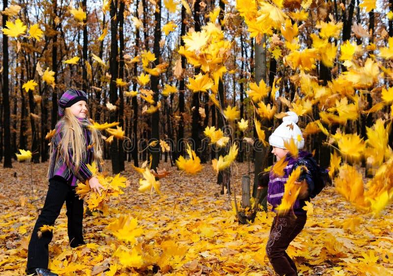 Crianças na floresta do outono imagens de stock
