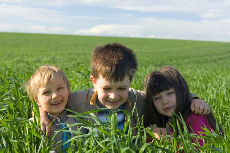 Crianças na grama foto de stock royalty free