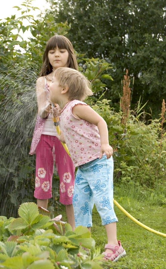 Crianças na horta fotos de stock