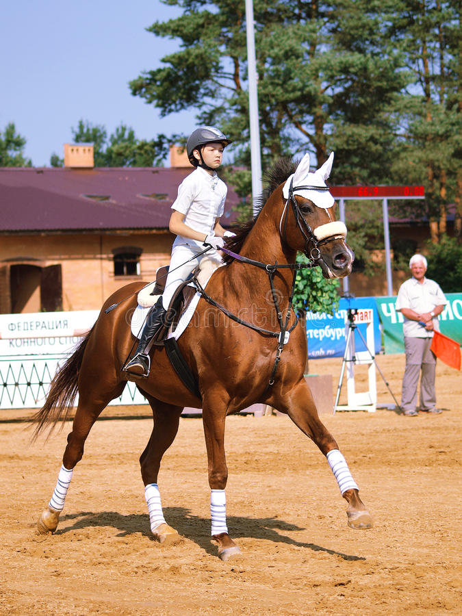 Crianças no esporte equestre foto de stock royalty free