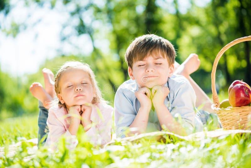 Crianças no piquenique imagem de stock royalty free