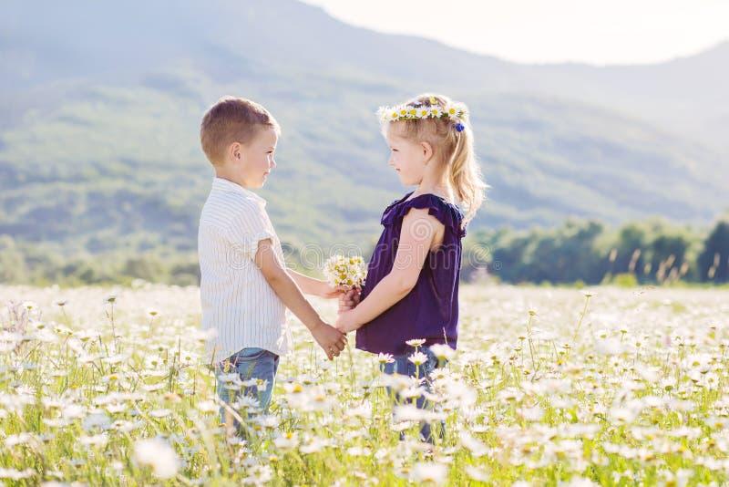 Crianças pequenas bonitas no campo das margaridas foto de stock