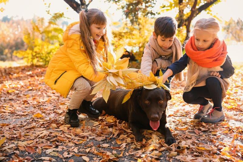 Crianças pequenas bonitos com o cão no parque do outono imagem de stock
