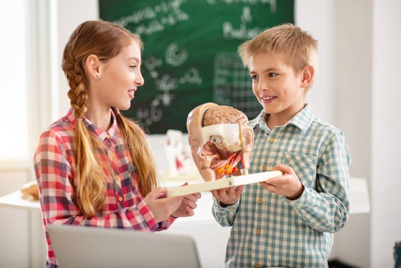 Crianças positivas agradáveis que guardam um modelo do órgão imagem de stock