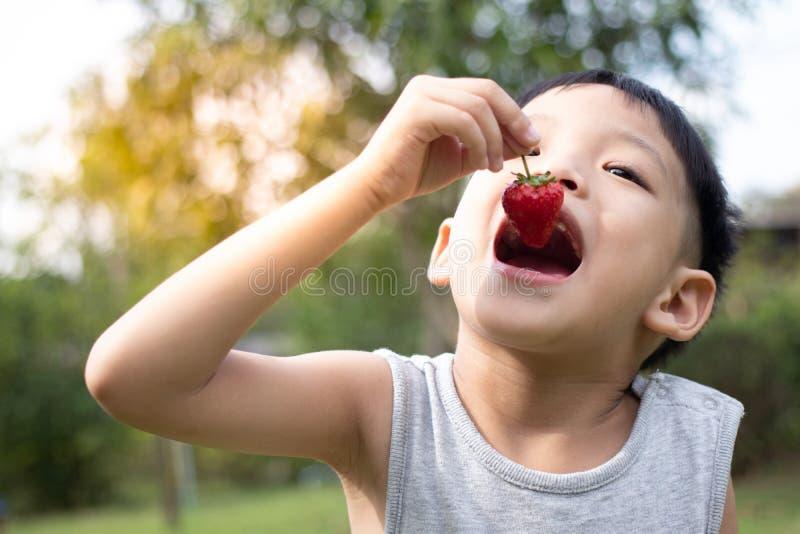 Crianças que comem morangos imagens de stock