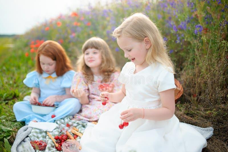 Crianças que escolhem a cereja em um campo Cerejas da picareta das crianças no verão imagem de stock