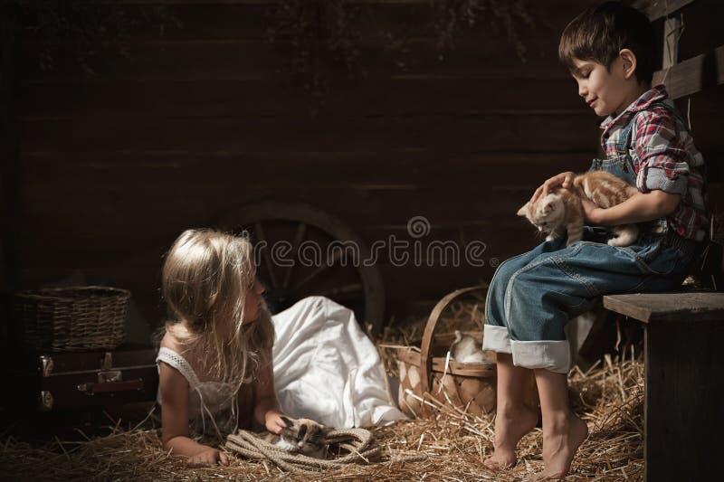 Crianças que jogam com gatinhos fotografia de stock