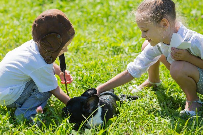 Crianças que jogam com o cão, buldogue francês fotografia de stock