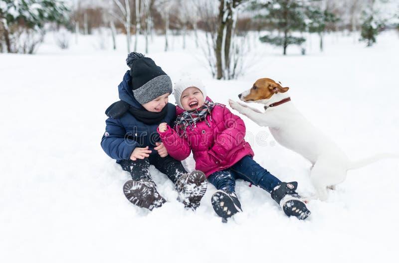 Crianças que jogam com o cachorrinho do terrier de Jack Russell no parque no inverno na neve foto de stock royalty free