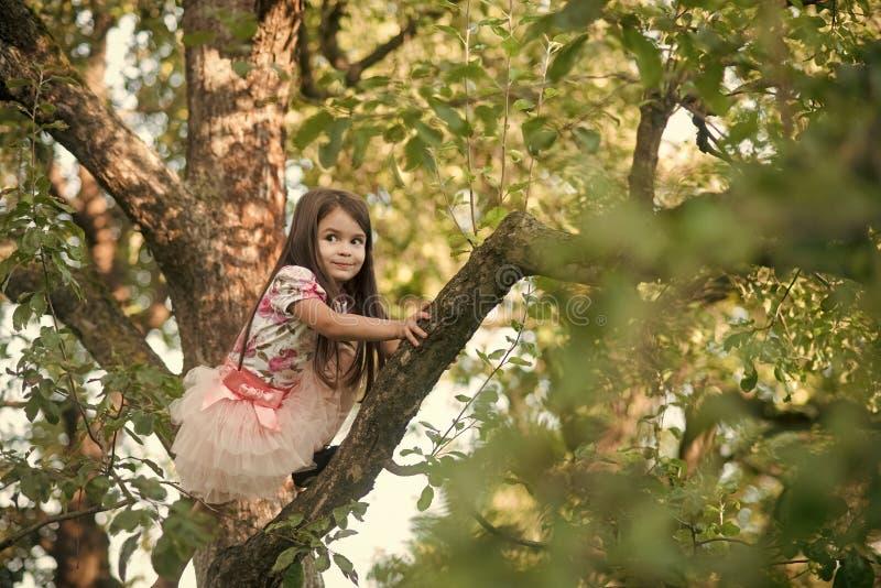 Crianças que jogam - jogo feliz Moça pequena escalada na árvore imagem de stock