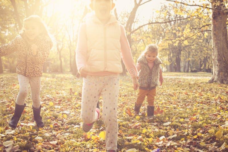 Crianças que jogam no prado imagens de stock