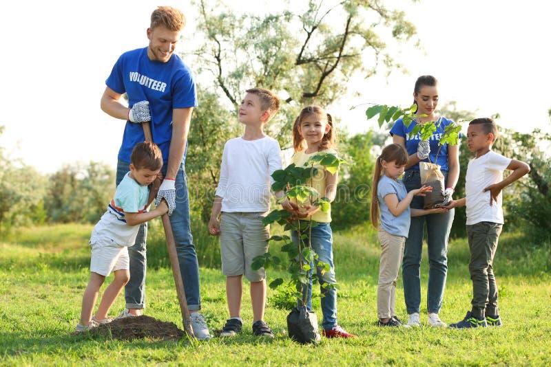 Crianças que plantam árvores com voluntários fotografia de stock royalty free