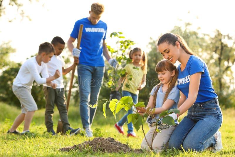 Crianças que plantam árvores com voluntários imagens de stock royalty free