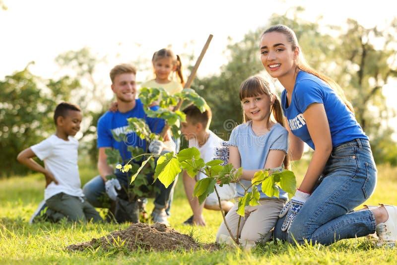 Crianças que plantam árvores com voluntários imagens de stock