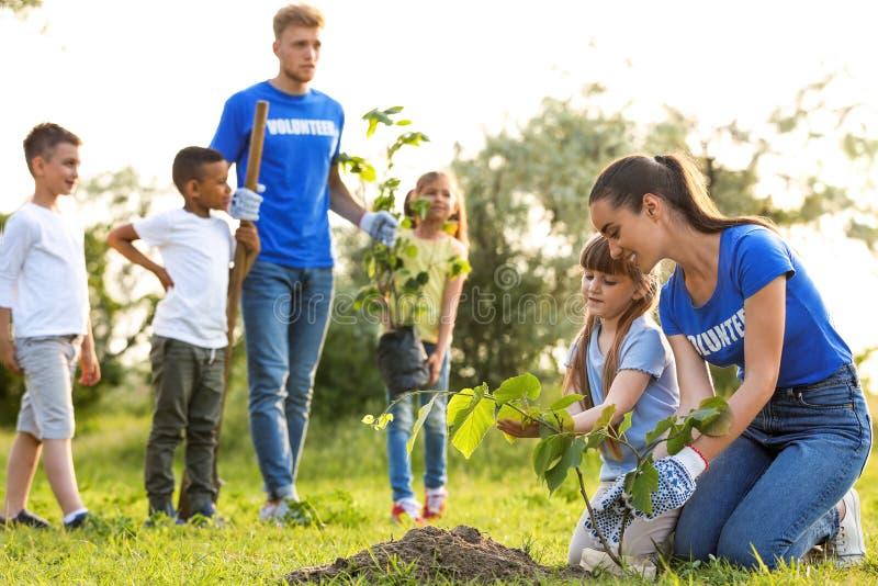 Crianças que plantam árvores com voluntários fotografia de stock