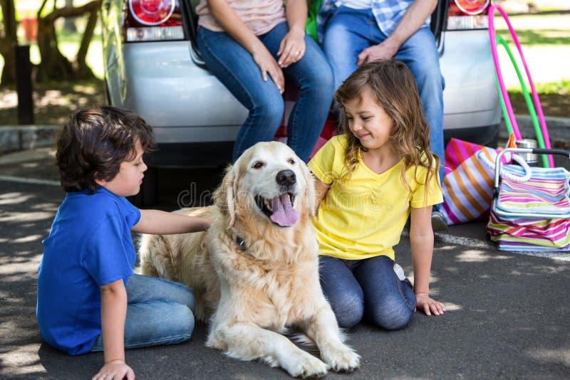 Crianças que ruffling a pele dos cães fotografia de stock