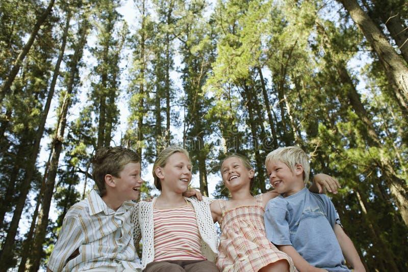 Crianças que sentam o braço ao redor na floresta foto de stock royalty free