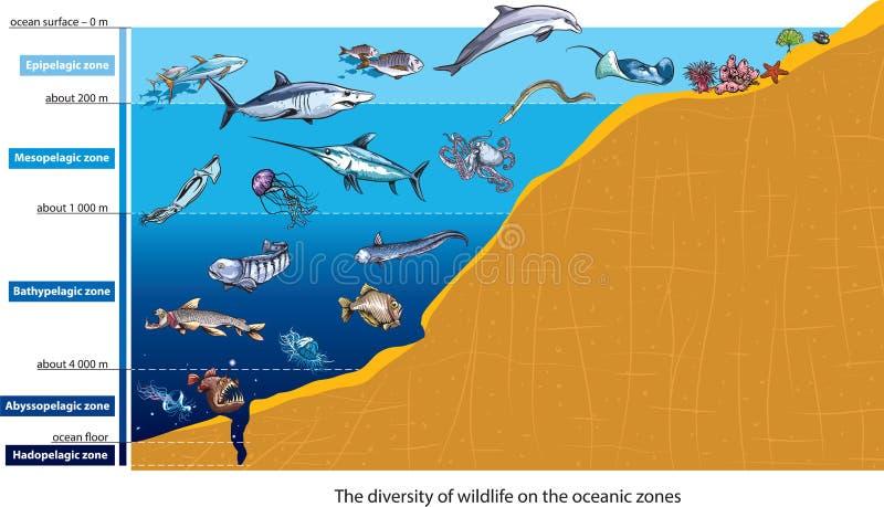 Criaturas del mar profundo stock de ilustración
